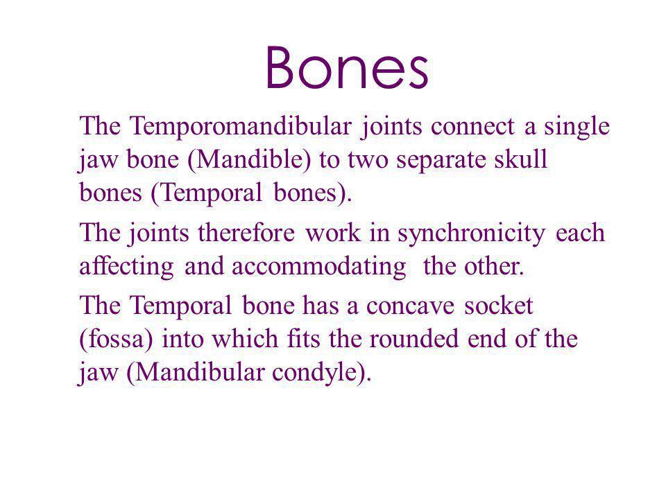 Bones The Temporomandibular joints connect a single jaw bone (Mandible) to two separate skull bones (Temporal bones). The joints therefore work in syn