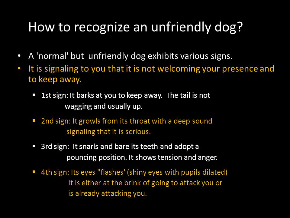 How to recognize an unfriendly dog? A 'normal' but unfriendly dog exhibits various signs. It is signaling to you that it is not welcoming your presenc