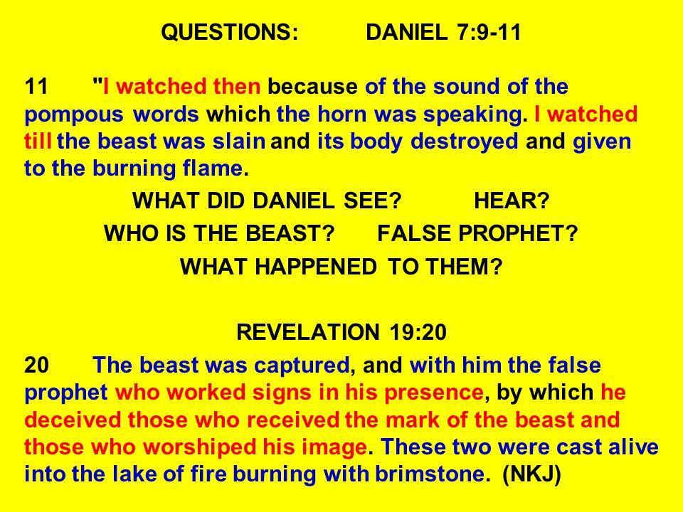 QUESTIONS:DANIEL 7:9-11 11