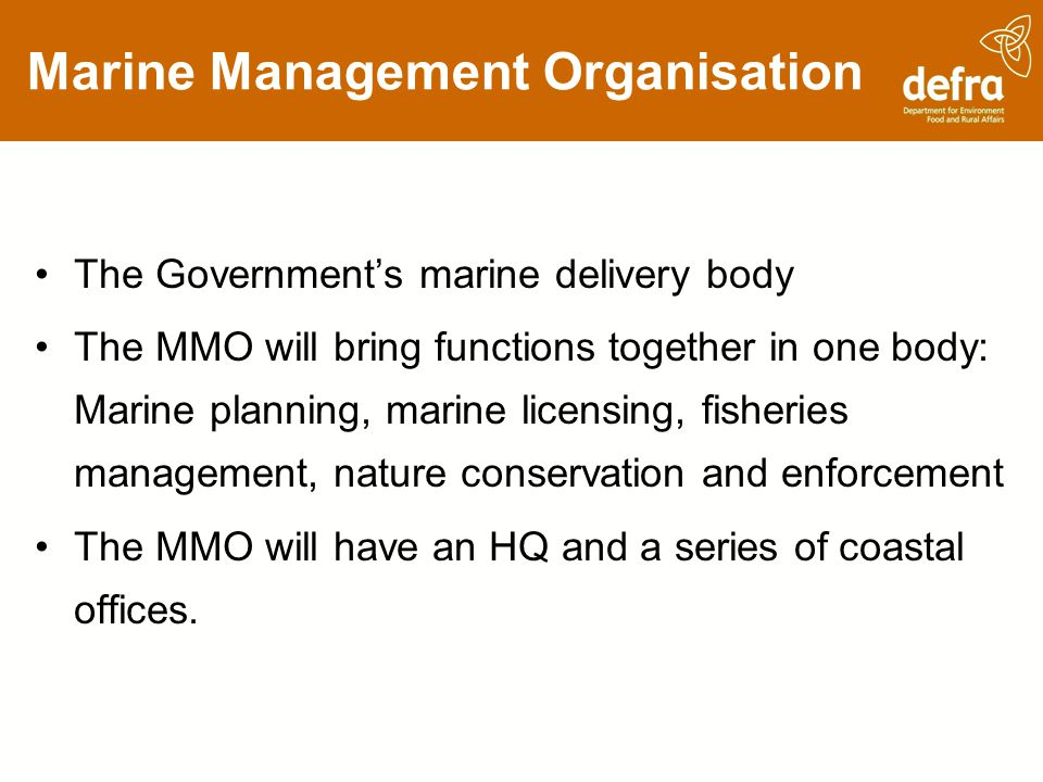 Marine Management Organisation The Governments marine delivery body The MMO will bring functions together in one body: Marine planning, marine licensi
