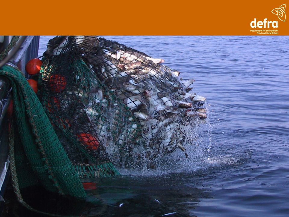 Modernising Marine Fisheries Management The marine fisheries proposals in the Bill will deliver… Strengthened fisheries and environmental management so that more effective action can be taken to conserve marine ecosystems and help achieve a sustainable and profitable fisheries sector.