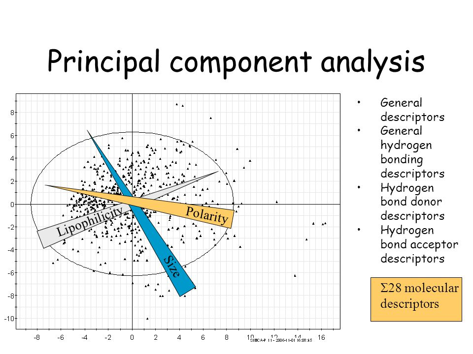 Principal component analysis Lipophilicity Size Polarity General descriptors General hydrogen bonding descriptors Hydrogen bond donor descriptors Hydrogen bond acceptor descriptors 28 molecular descriptors