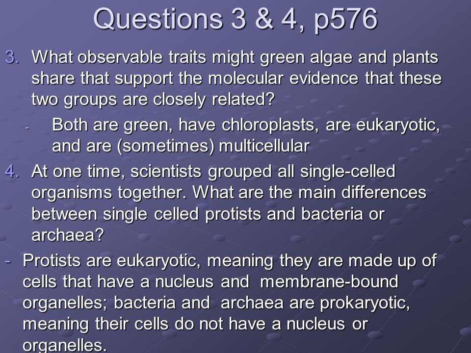 Questions 3 & 4, p576 3.What observable traits might green algae and plants share that support the molecular evidence that these two groups are closel