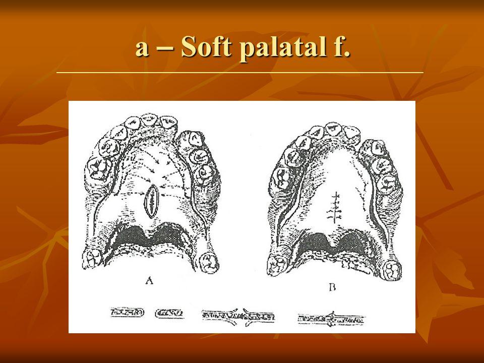a – Soft palatal f.