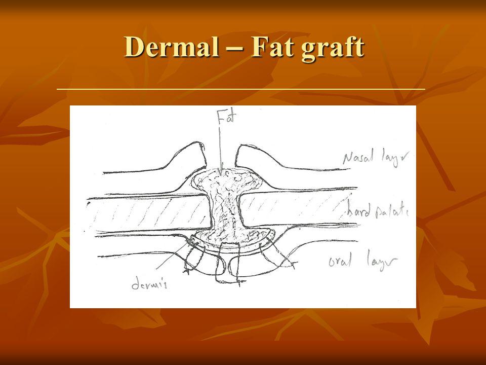 Dermal – Fat graft