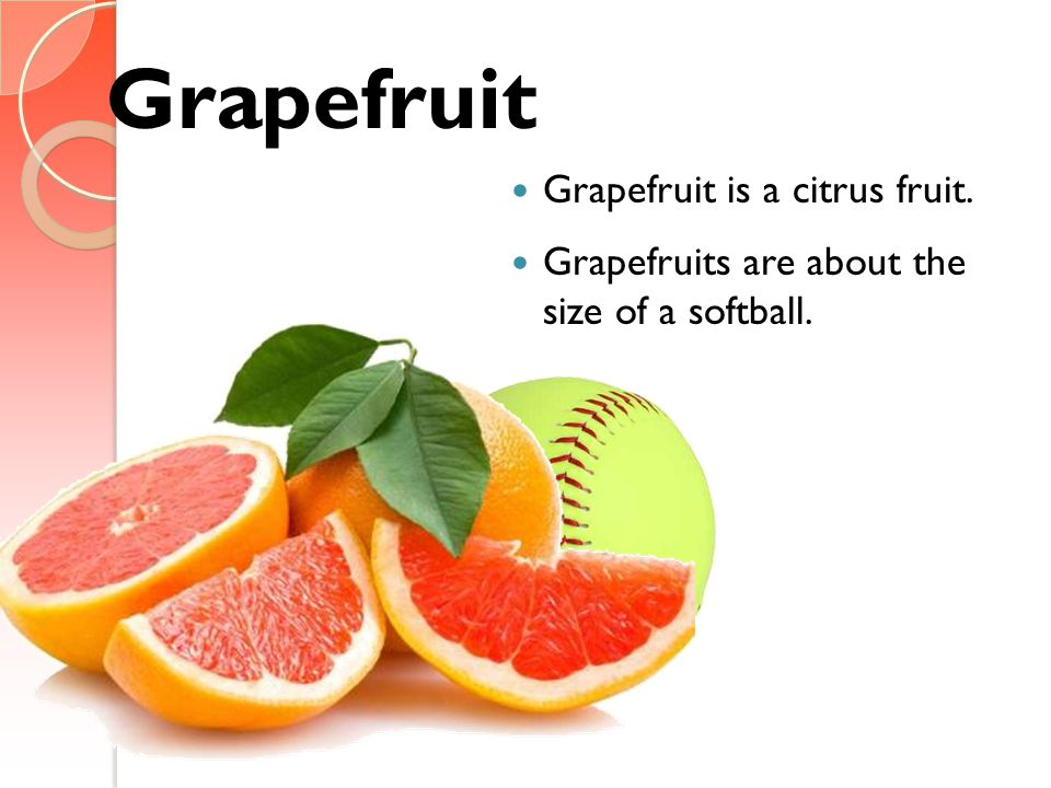 Grapefruit Grapefruit is a citrus fruit. Grapefruits are about the size of a softball.