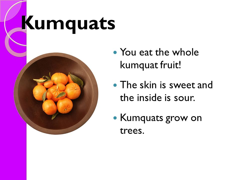 Kumquats You eat the whole kumquat fruit! The skin is sweet and the inside is sour. Kumquats grow on trees.