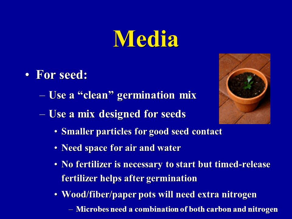 Media For seed:For seed: –Use a clean germination mix –Use a mix designed for seeds Smaller particles for good seed contactSmaller particles for good seed contact Need space for air and waterNeed space for air and water No fertilizer is necessary to start but timed-release fertilizer helps after germinationNo fertilizer is necessary to start but timed-release fertilizer helps after germination Wood/fiber/paper pots will need extra nitrogenWood/fiber/paper pots will need extra nitrogen –Microbes need a combination of both carbon and nitrogen