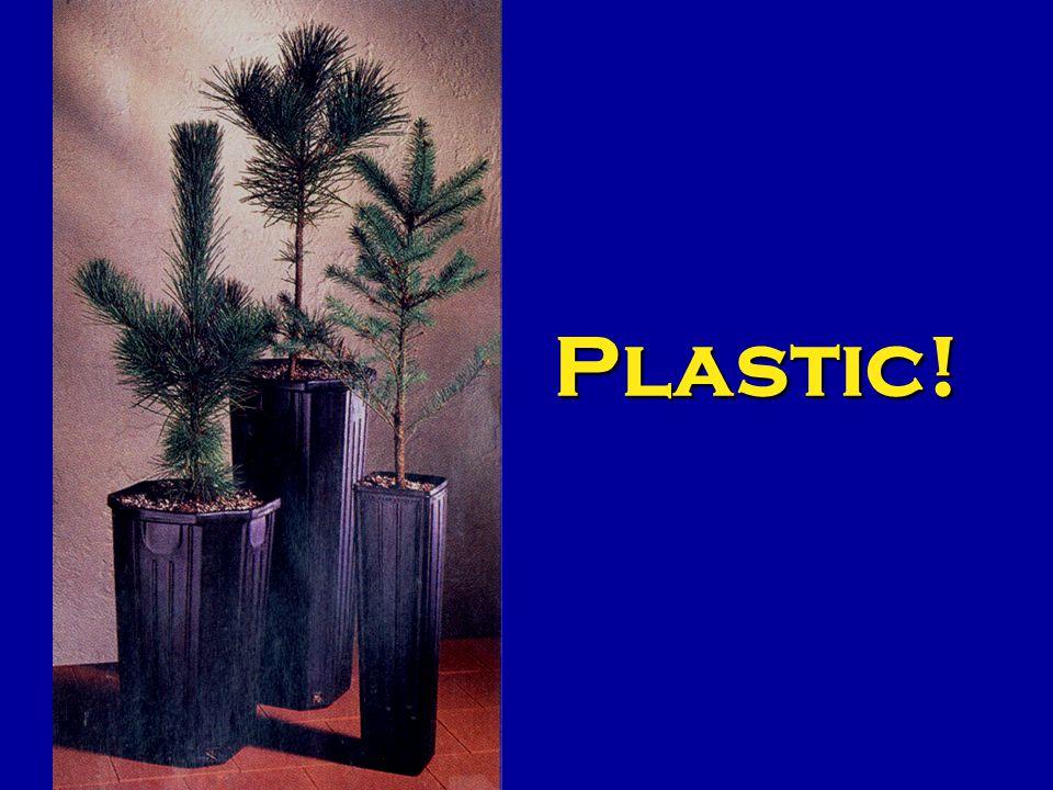 Plastic!
