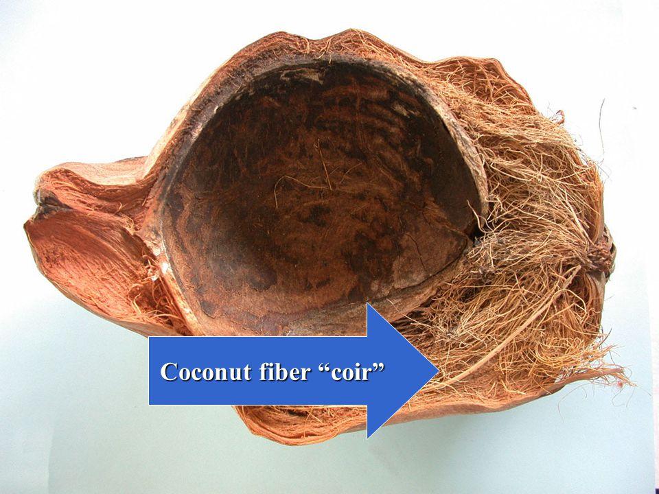 Coconut fiber coir