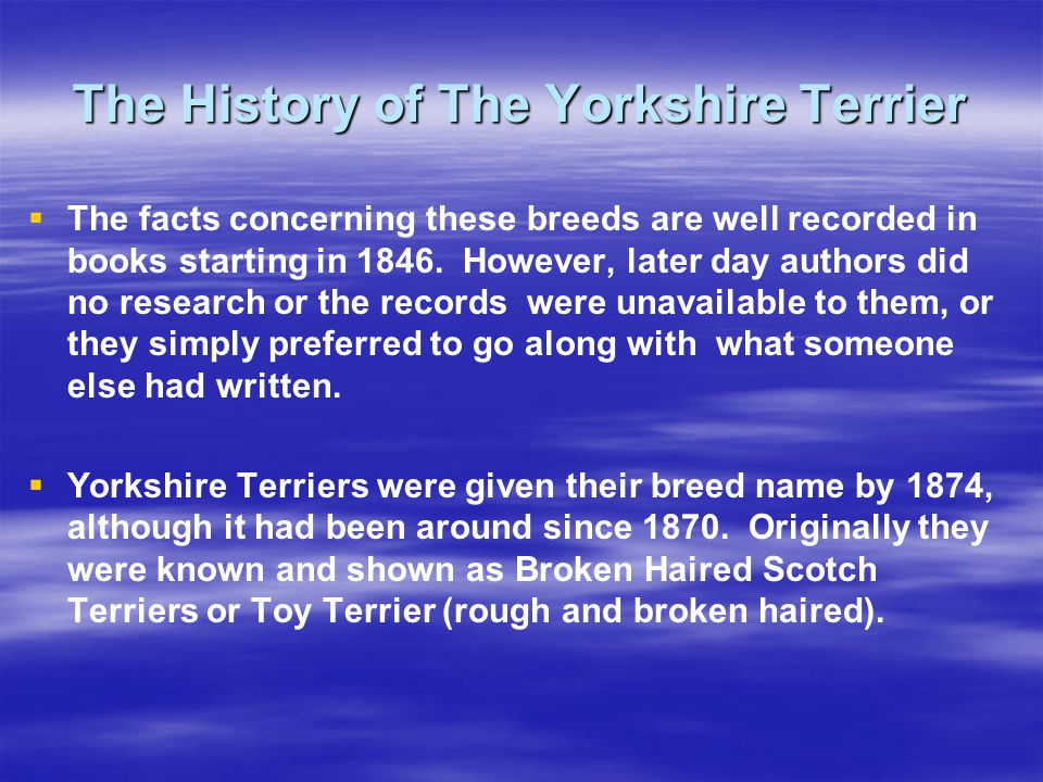 The History of The Yorkshire Terrier The facts concerning these breeds are well recorded in books starting in 1846.