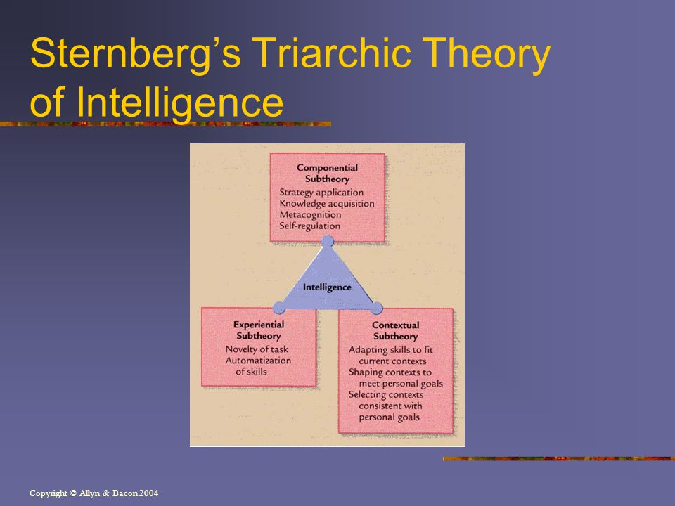 Copyright © Allyn & Bacon 2004 Sternbergs Triarchic Theory of Intelligence