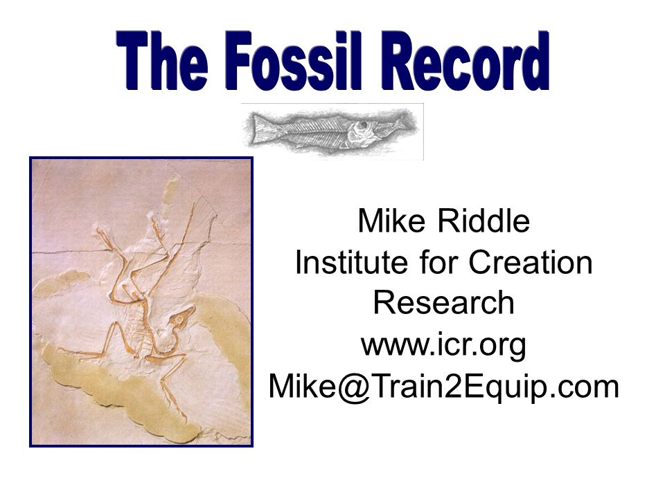The Fossil Record Mike Riddle Institute for Creation Research www.icr.org Mike@Train2Equip.com