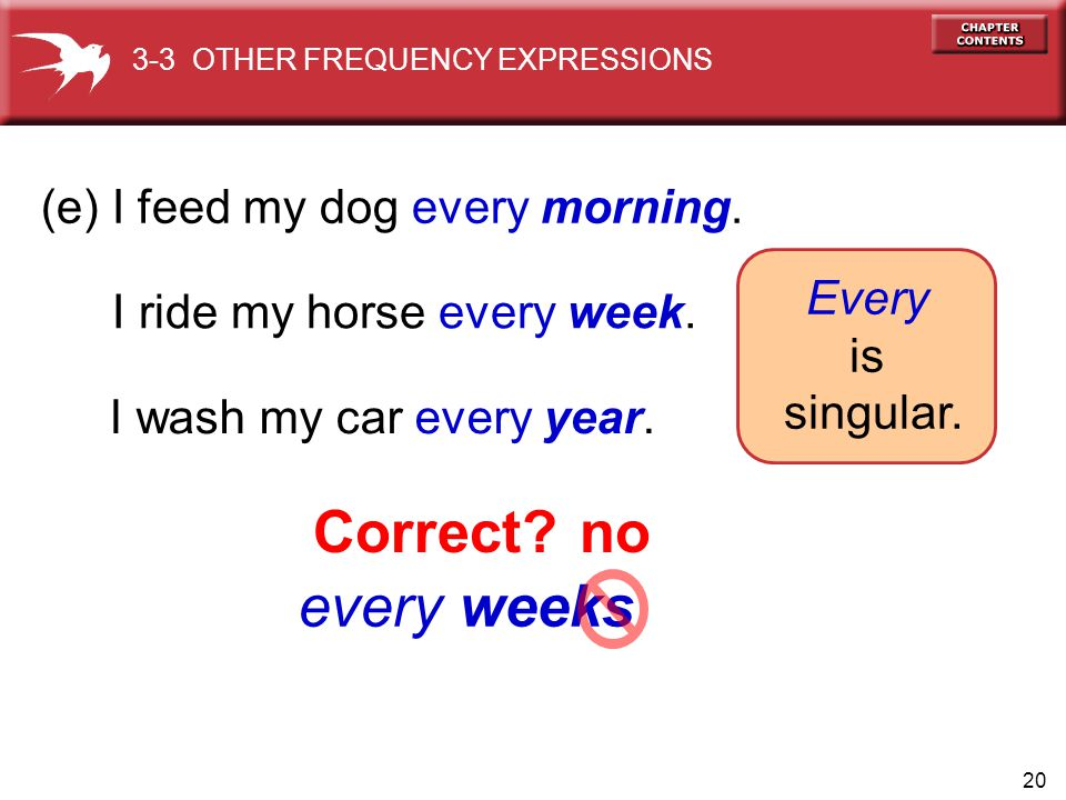 20 every weeks (e) I feed my dog every morning.I ride my horse every week.