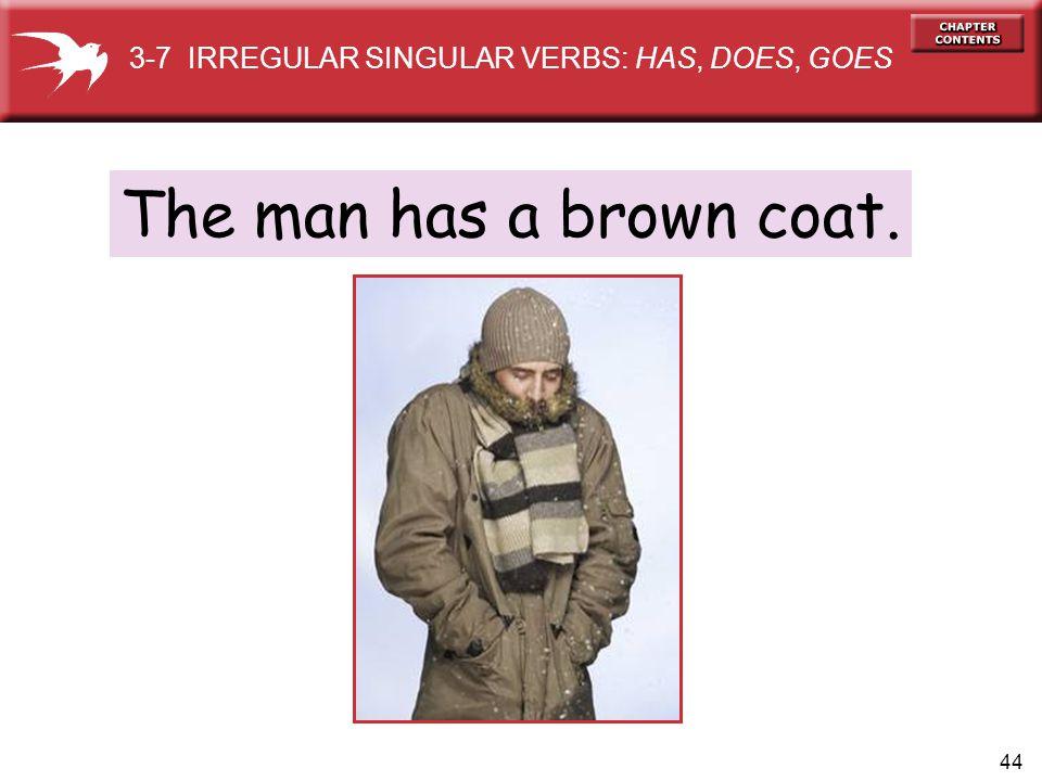 44 The man has a brown coat. 3-7 IRREGULAR SINGULAR VERBS: HAS, DOES, GOES