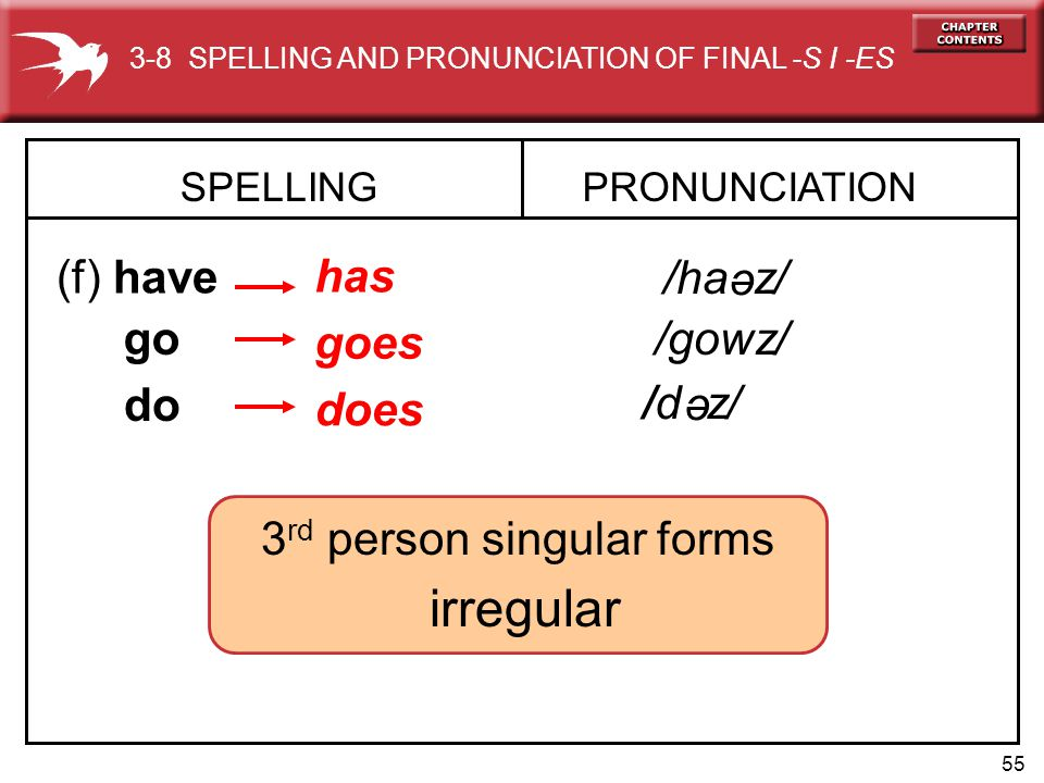 55 SPELLING (f) have PRONUNCIATION has go goes /ha z/ do does e /gowz/ /d z/ e 3-8 SPELLING AND PRONUNCIATION OF FINAL -S I -ES 3 rd person singular forms irregular