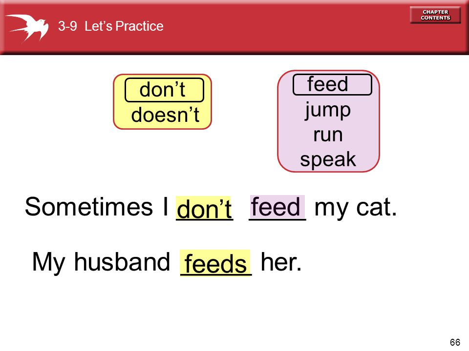 66 feed dont feeds 3-9 Lets Practice dont doesnt feed jump run speak Sometimes I ____ ____ my cat.
