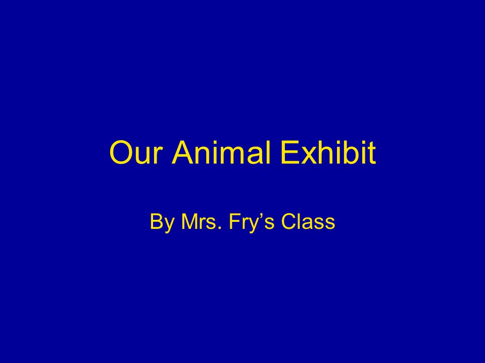 Our Animal Exhibit By Mrs. Frys Class