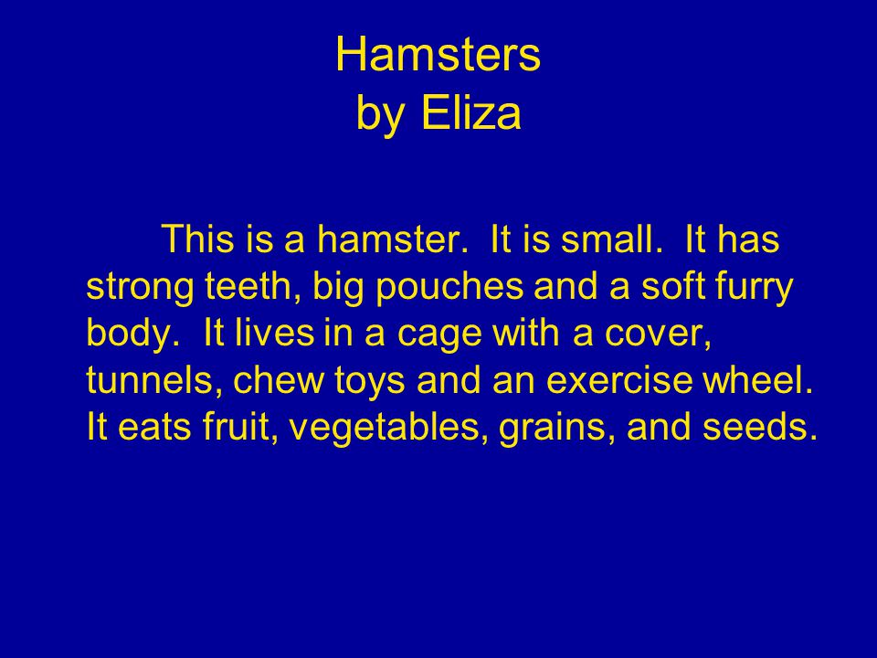 Hamsters by Eliza This is a hamster. It is small.