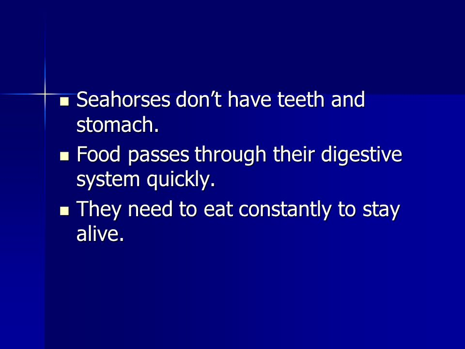 Seahorses dont have teeth and stomach. Seahorses dont have teeth and stomach. Food passes through their digestive system quickly. Food passes through