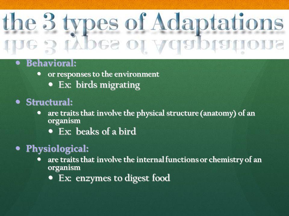 Behavioral: Behavioral: or responses to the environment or responses to the environment Ex: birds migrating Ex: birds migrating Structural: Structural