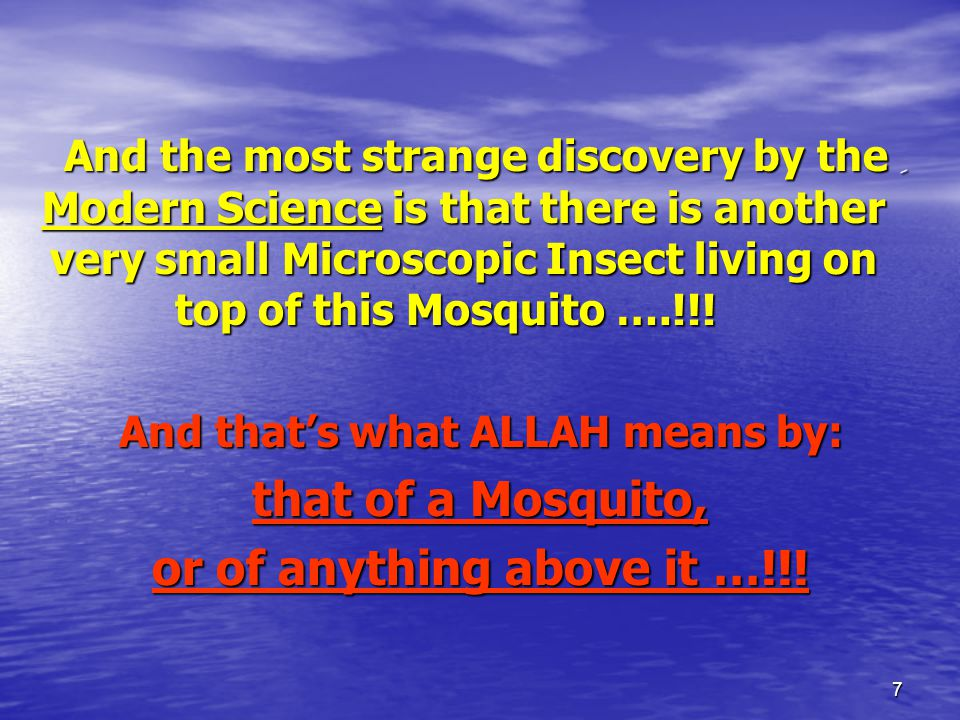 7 ِAnd the most strange discovery by the Modern Science is that there is another very small Microscopic Insect living on top of this Mosquito ….!!.