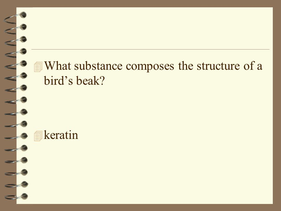 4 What substance composes the structure of a birds beak? 4 keratin