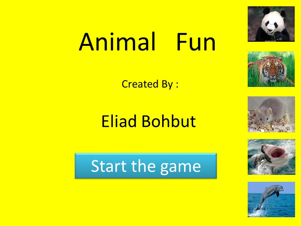 Animal Fun Created By : Eliad Bohbut Start the game