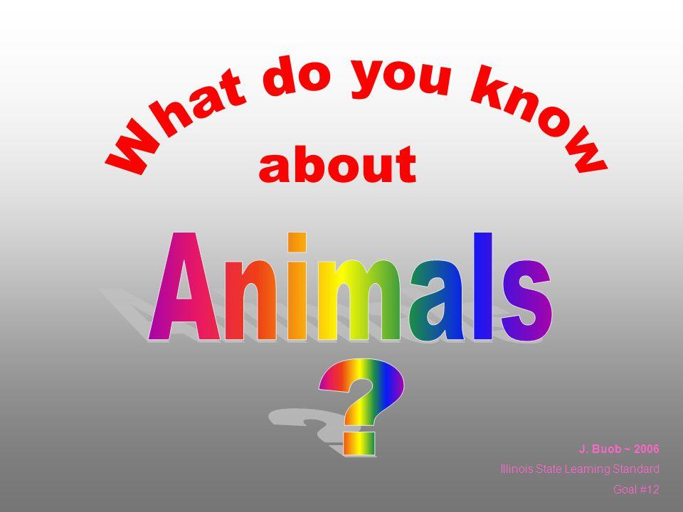 Animals that have backbones Animals that dont have backbones Animals Where do amphibians belong.