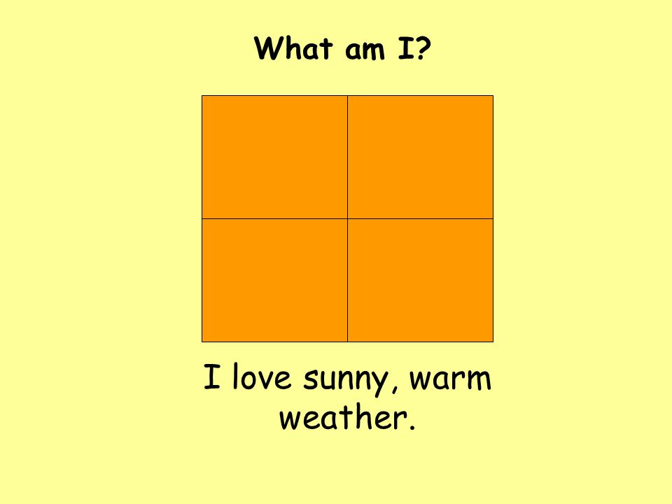 I love sunny, warm weather. What am I?