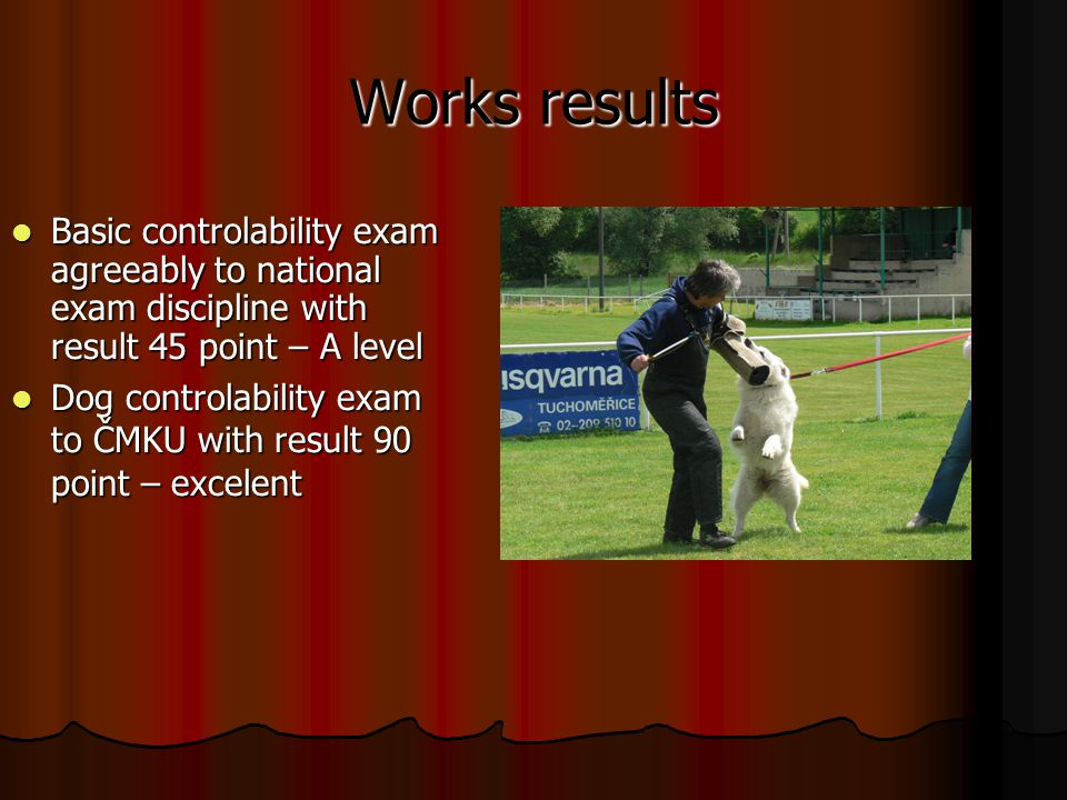 Works results Basic controlability exam agreeably to national exam discipline with result 45 point – A level Basic controlability exam agreeably to national exam discipline with result 45 point – A level Dog controlability exam to ČMKU with result 90 point – excelent Dog controlability exam to ČMKU with result 90 point – excelent