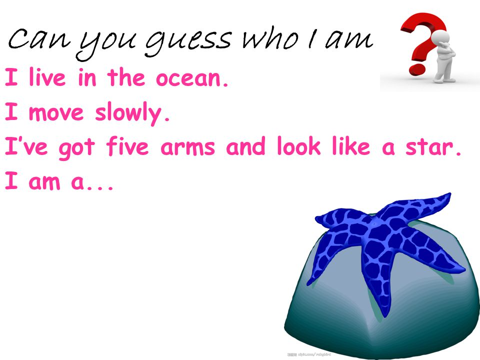 I live in the ocean. I move slowly. Ive got five arms and look like a star. I am a... Can you guess who I am