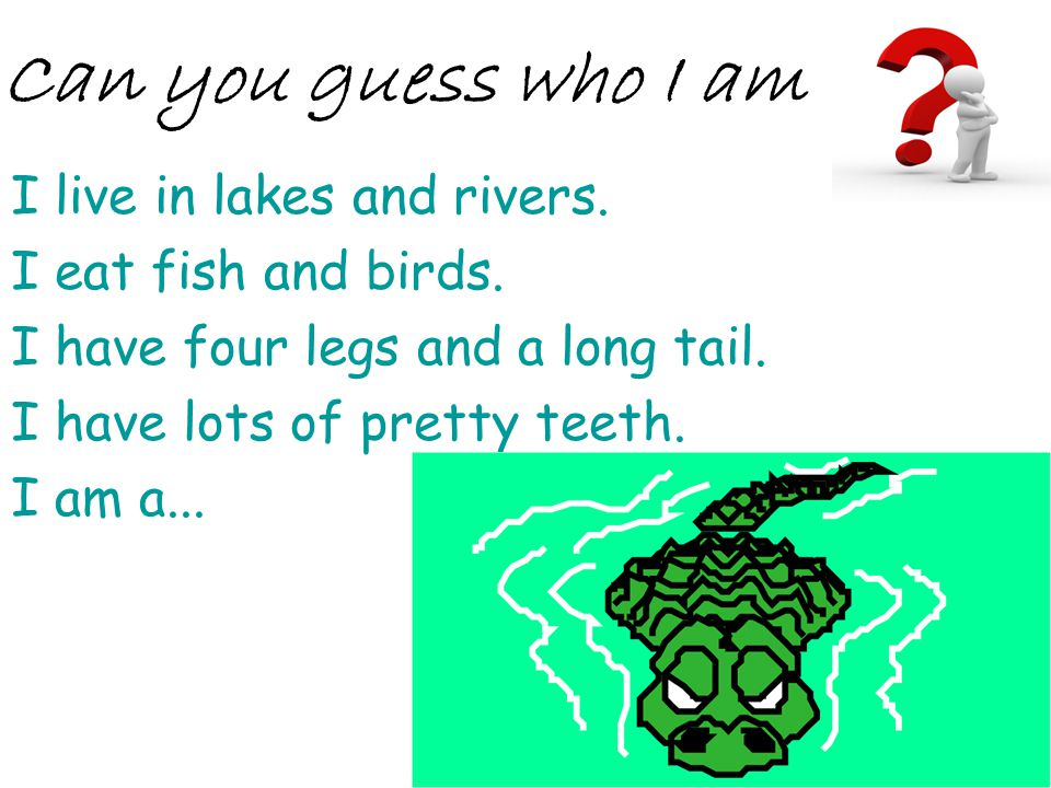 I live in lakes and rivers. I eat fish and birds. I have four legs and a long tail. I have lots of pretty teeth. I am a... Can you guess who I am