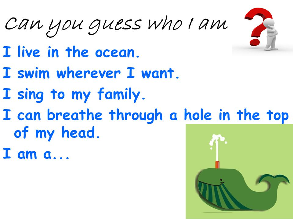 I live in the ocean. I swim wherever I want. I sing to my family. I can breathe through a hole in the top of my head. I am a... Can you guess who I am