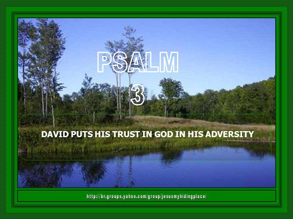 DAVID PUTS HIS TRUST IN GOD IN HIS ADVERSITY