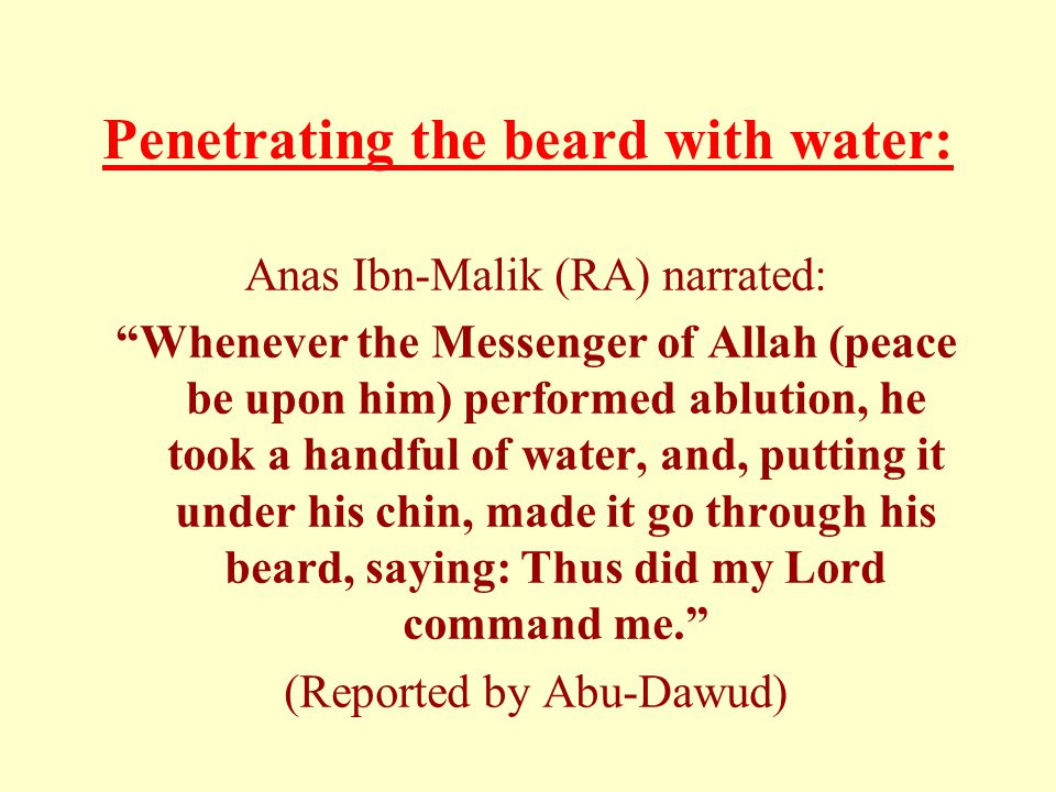 Penetrating the beard with water: Anas Ibn-Malik (RA) narrated: Whenever the Messenger of Allah (peace be upon him) performed ablution, he took a handful of water, and, putting it under his chin, made it go through his beard, saying: Thus did my Lord command me.