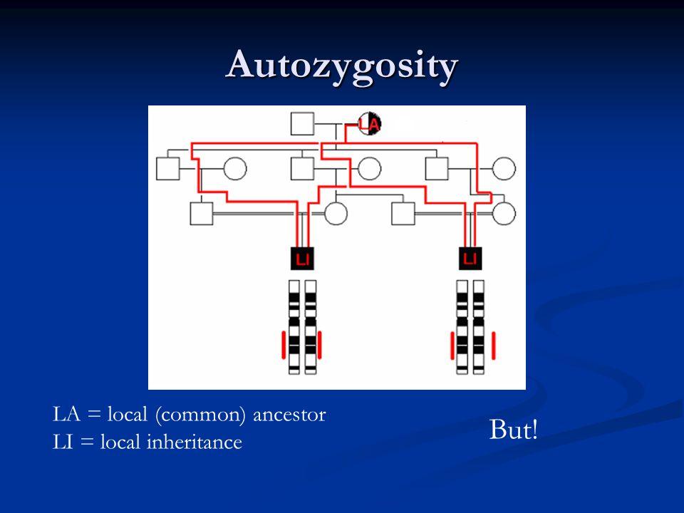 Autozygosity But! LA = local (common) ancestor LI = local inheritance