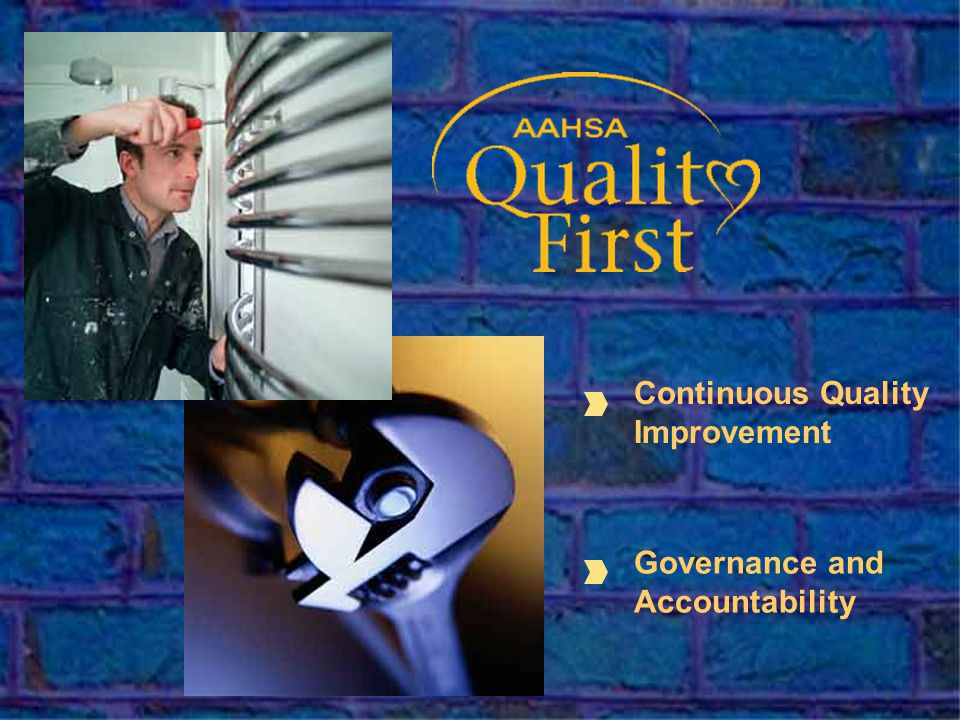 Continuous Quality Improvement Governance and Accountability