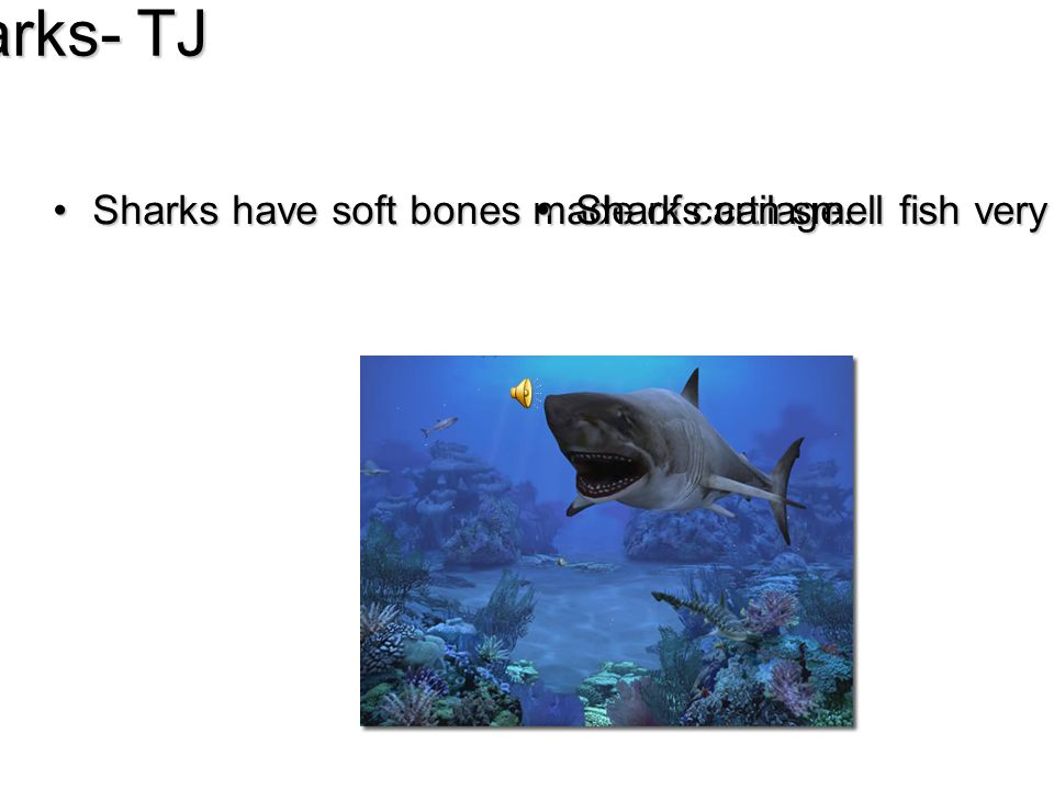 Sharks- TJ Sharks have soft bones made of cartilage.Sharks have soft bones made of cartilage.