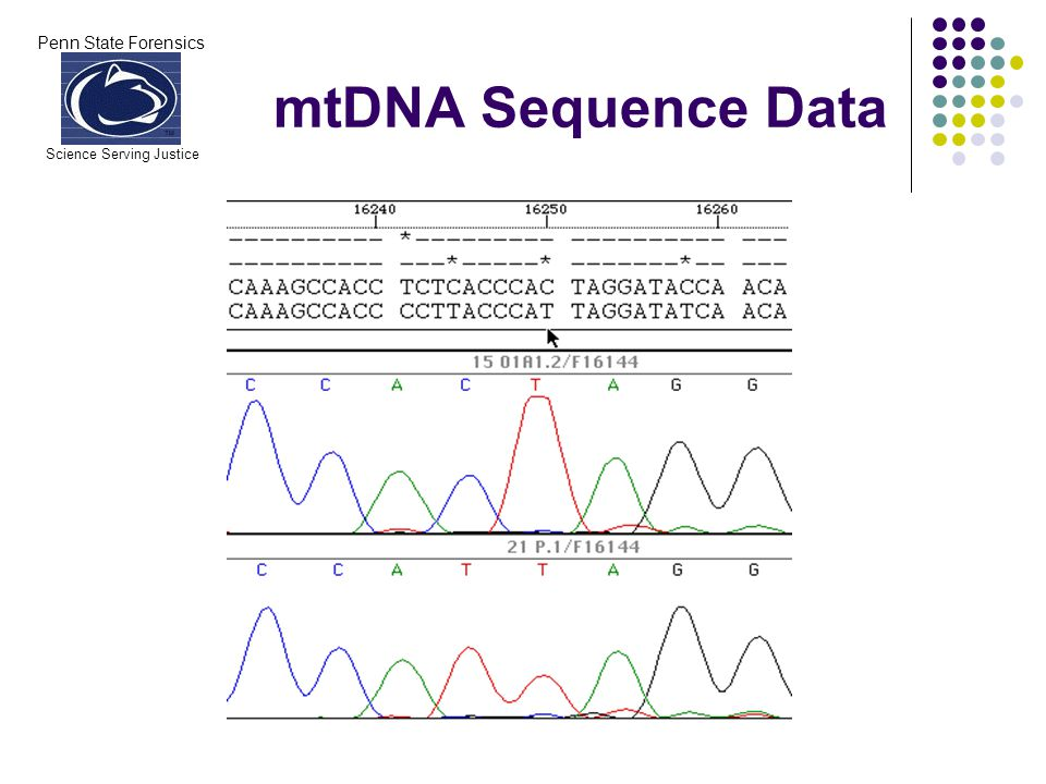 Penn State Forensics Science Serving Justice mtDNA Sequence Data