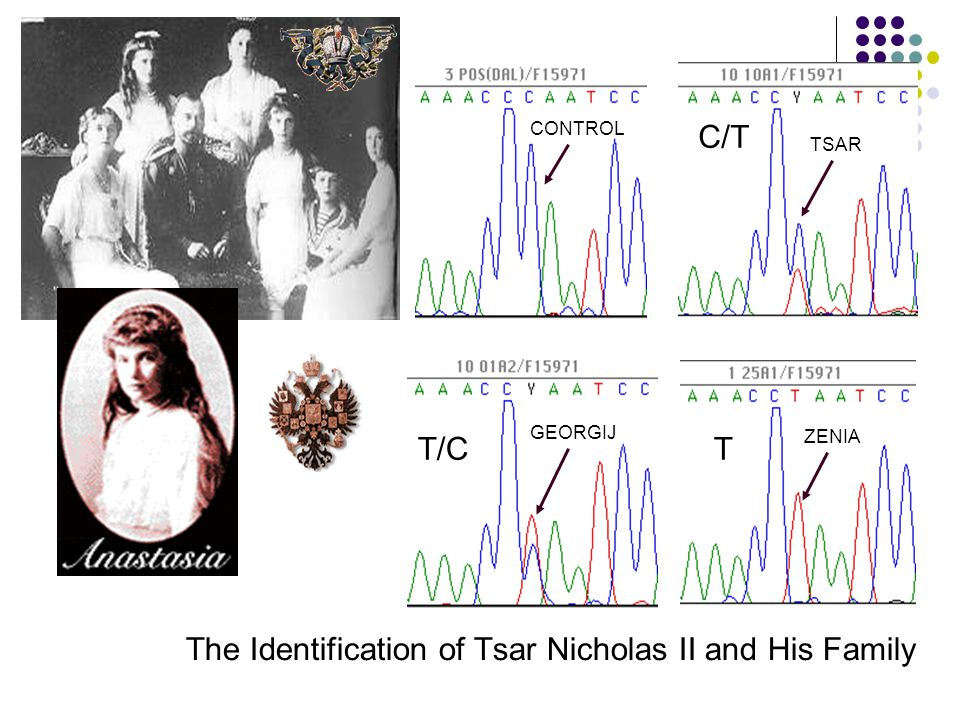 Penn State Forensics Science Serving Justice C/T T CONTROL TSAR GEORGIJ ZENIA The Identification of Tsar Nicholas II and His Family T/C