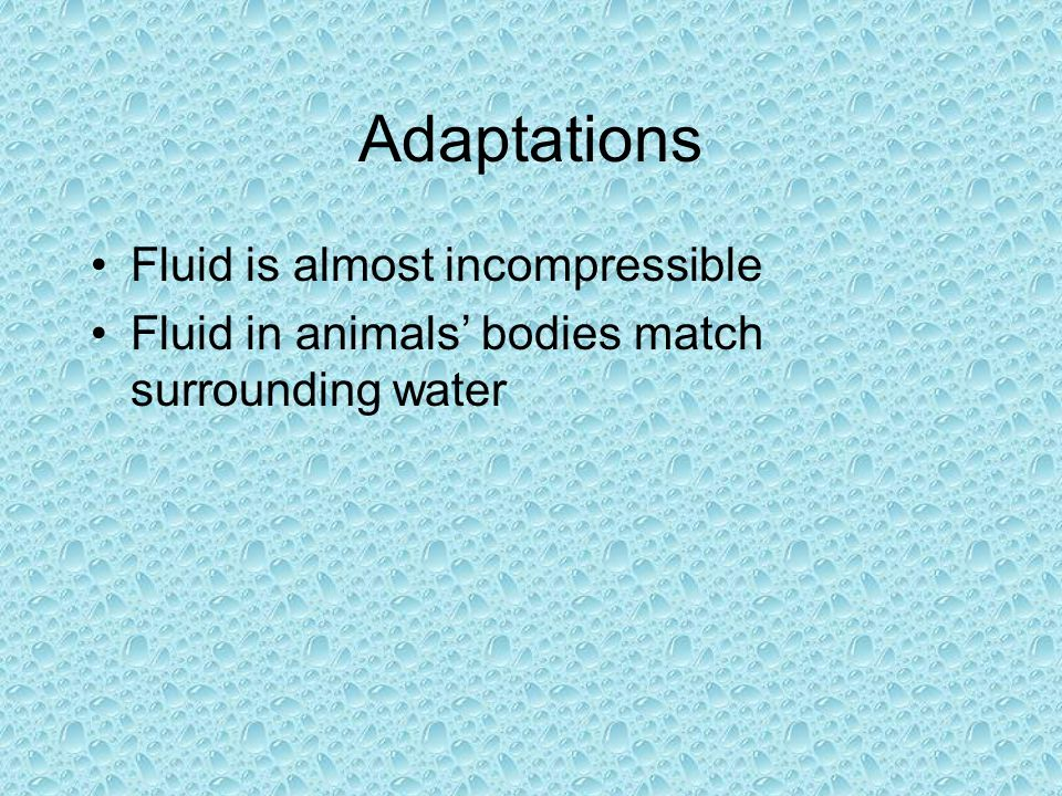 Adaptations Fluid is almost incompressible Fluid in animals bodies match surrounding water