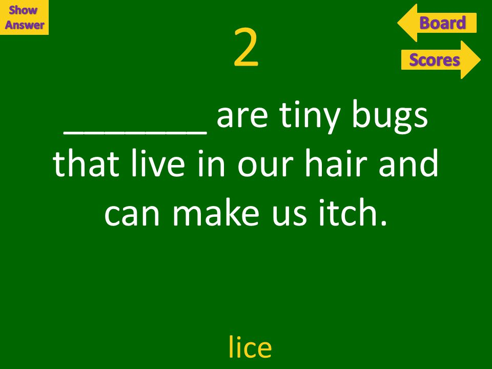 2 _______ are tiny bugs that live in our hair and can make us itch. lice