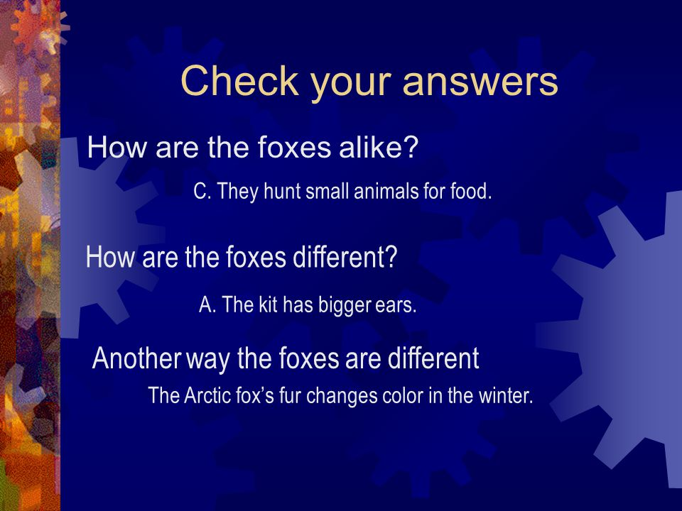 Check your answers How are the foxes alike? C. They hunt small animals for food. How are the foxes different? A. The kit has bigger ears. Another way