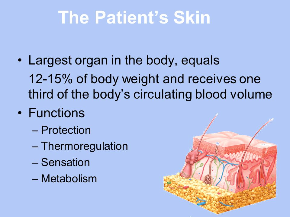 Special Consideration for Pigmented Skin Check skin compared to an adjacent or opposite area on the body –Skin temperature (warmth or coolness) –Tissue consistency (firm or boggy feel) –Sensation (pain or itching)