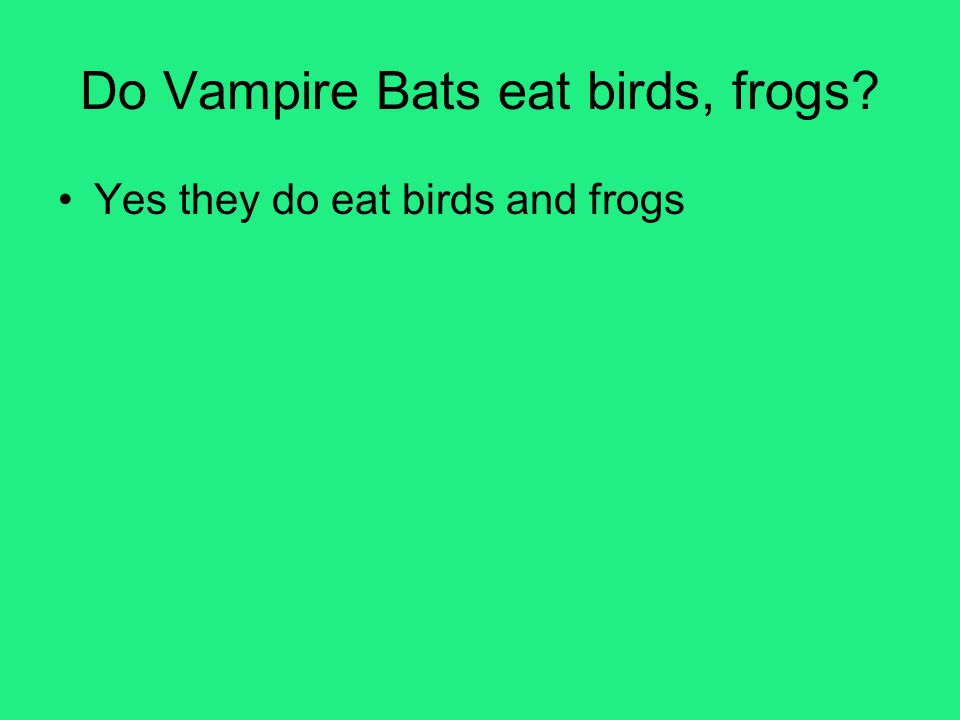 Do Vampire Bats eat birds, frogs? Yes they do eat birds and frogs