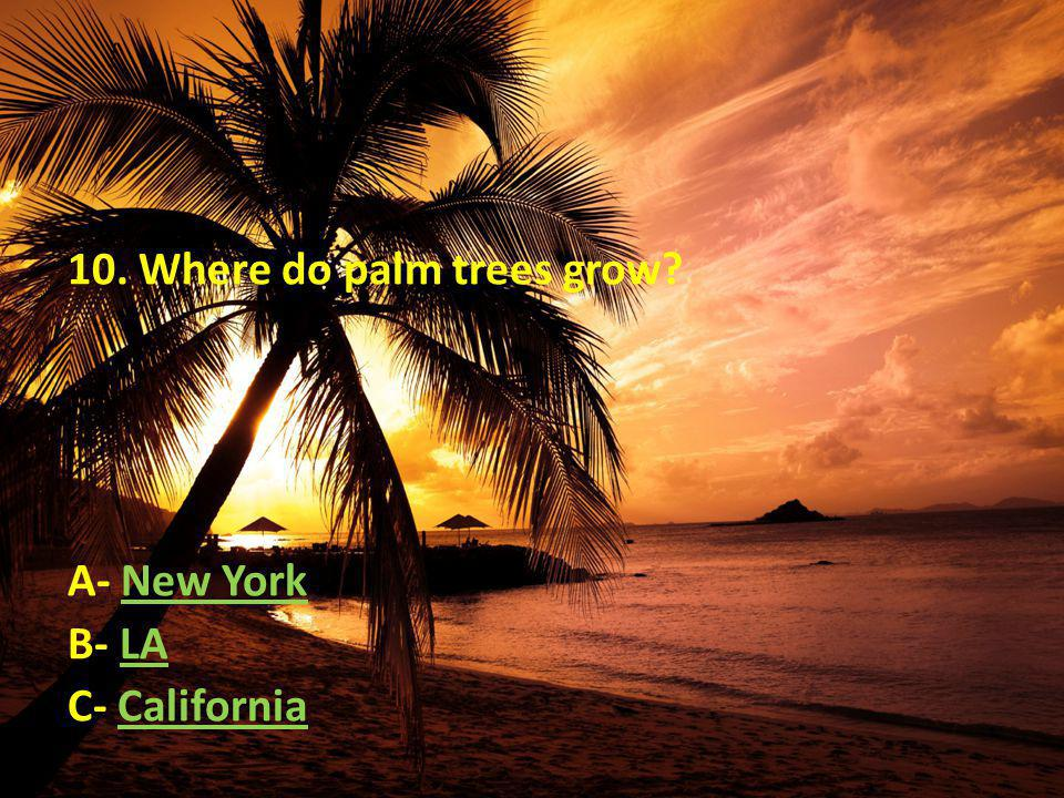 10. Where do palm trees grow A- New YorkNew York B- LALA C- CaliforniaCalifornia