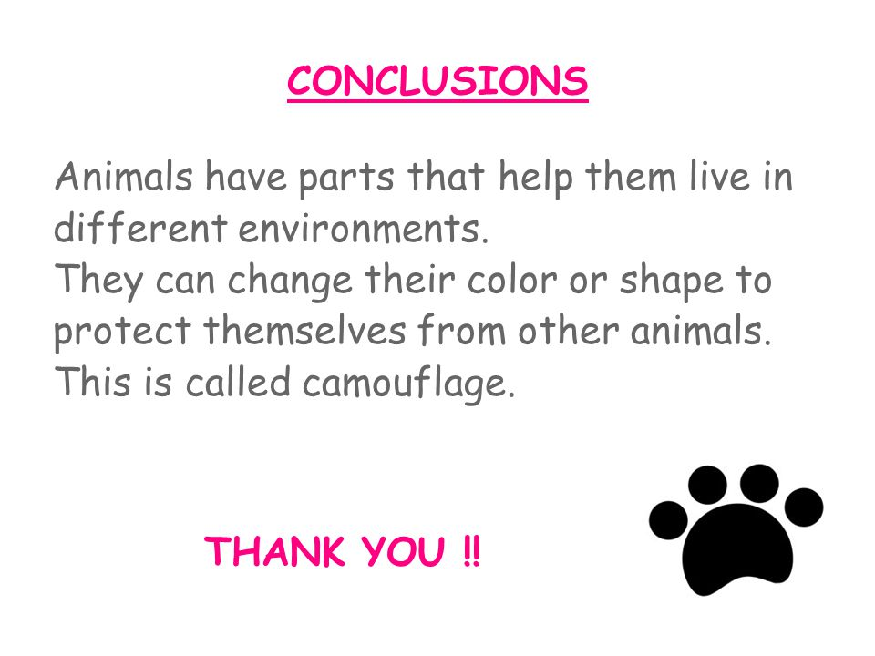 CONCLUSIONS Animals have parts that help them live in different environments.