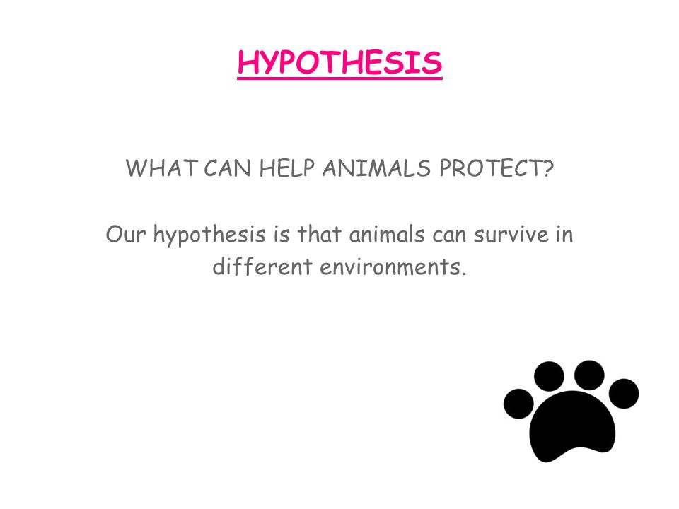 HYPOTHESIS WHAT CAN HELP ANIMALS PROTECT.