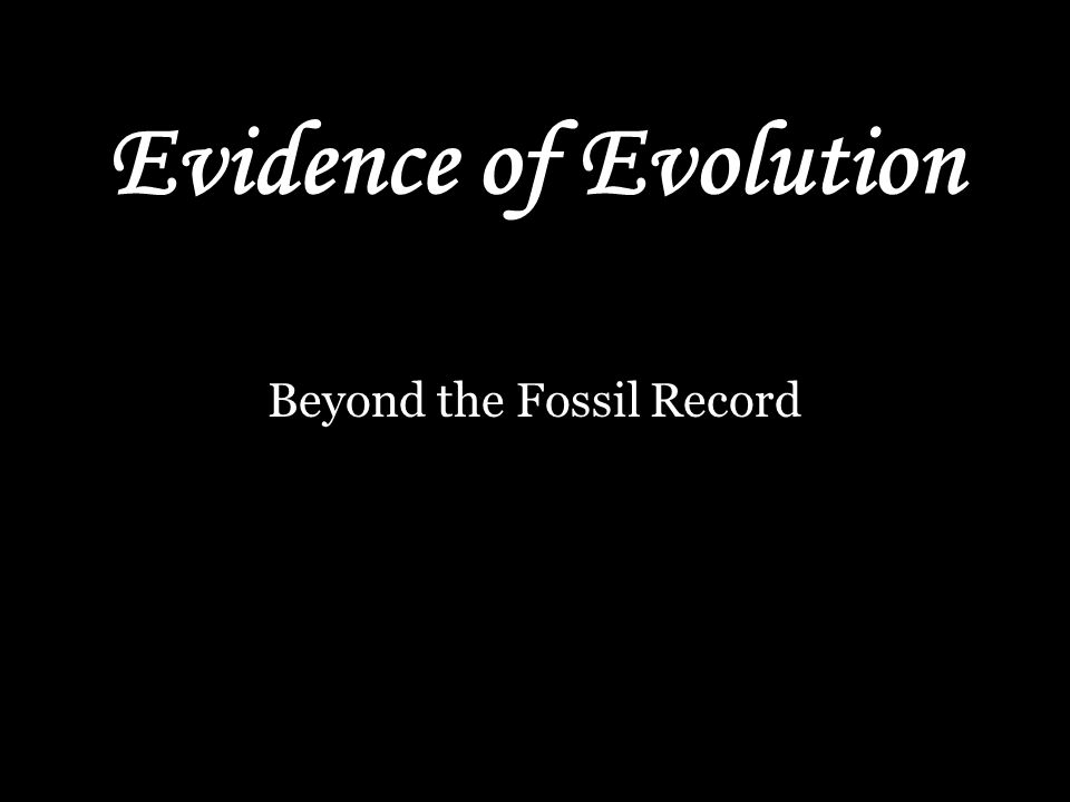 Evidence of Evolution Beyond the Fossil Record